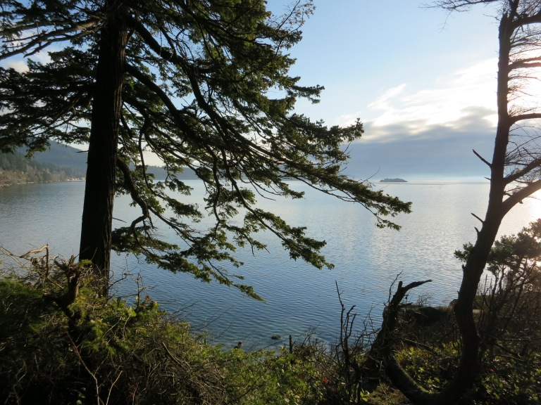 Lovely view of Chuckanut Bay
