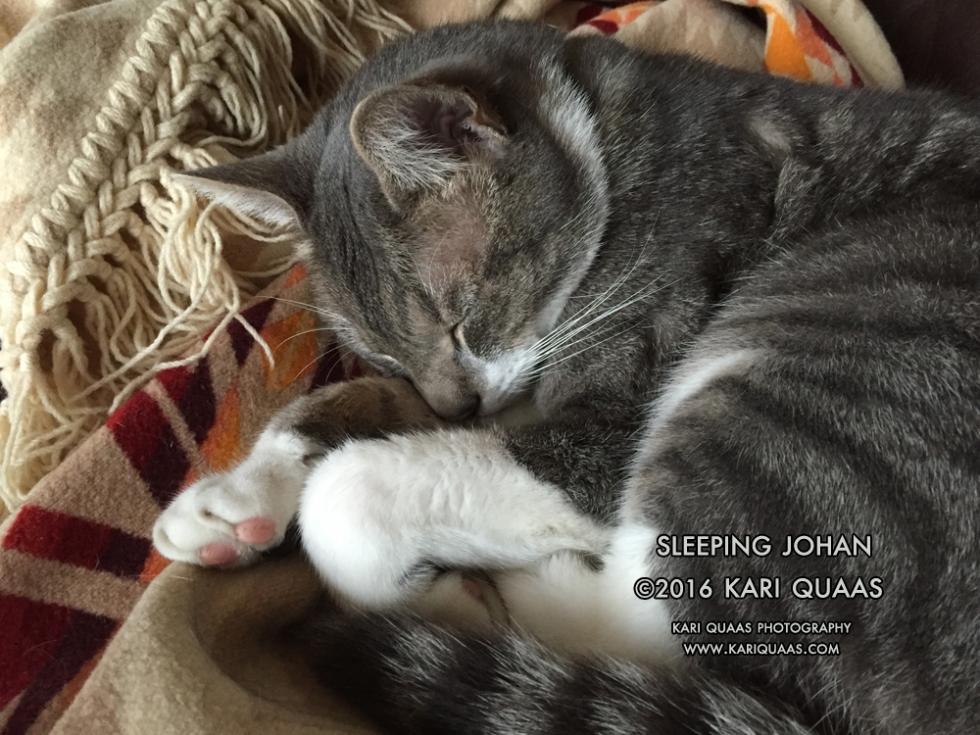 IMG_4505-Sleeping-Johan-by-Kari-Quaas-WEB